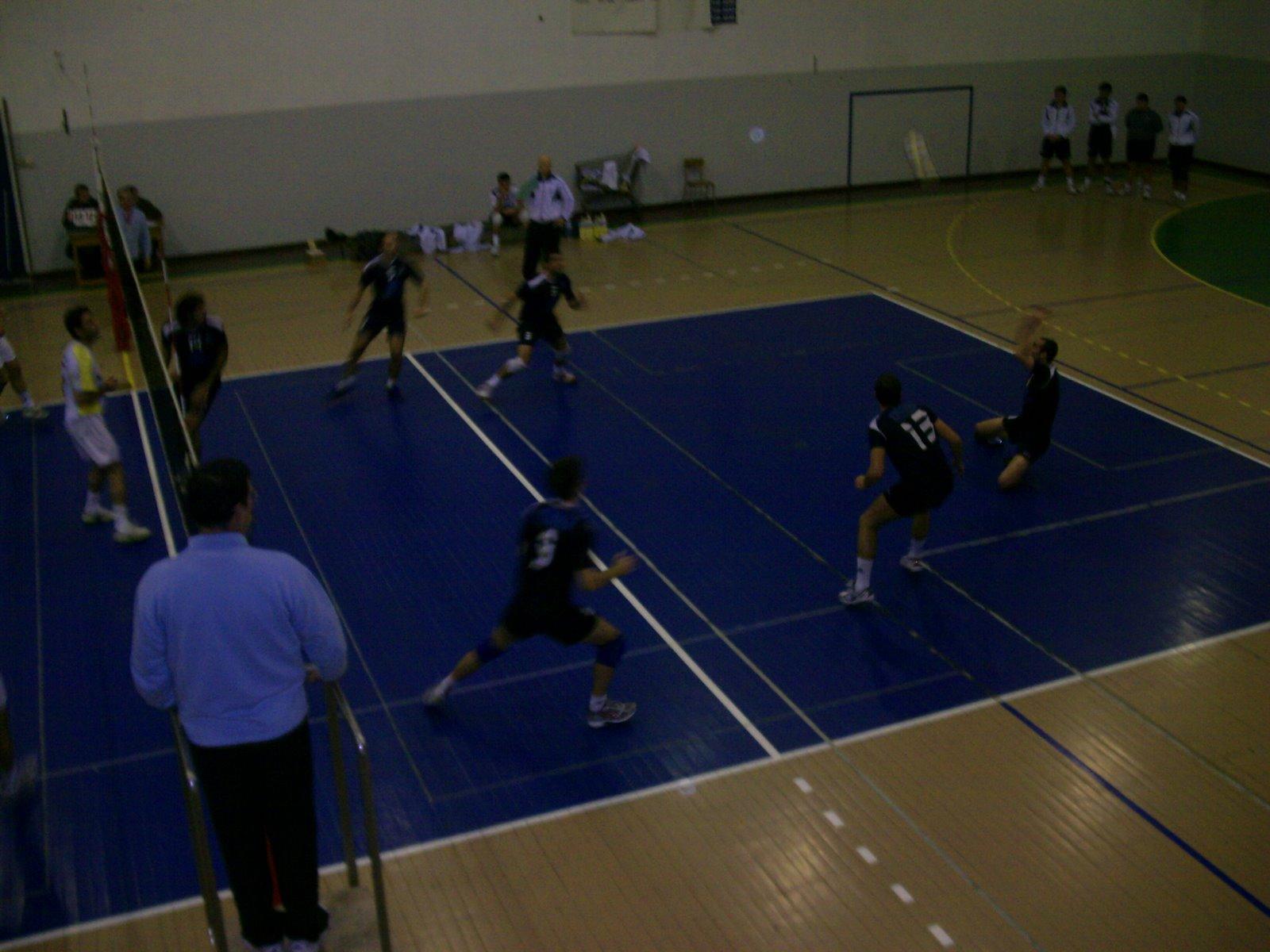 Seniores Voleibol